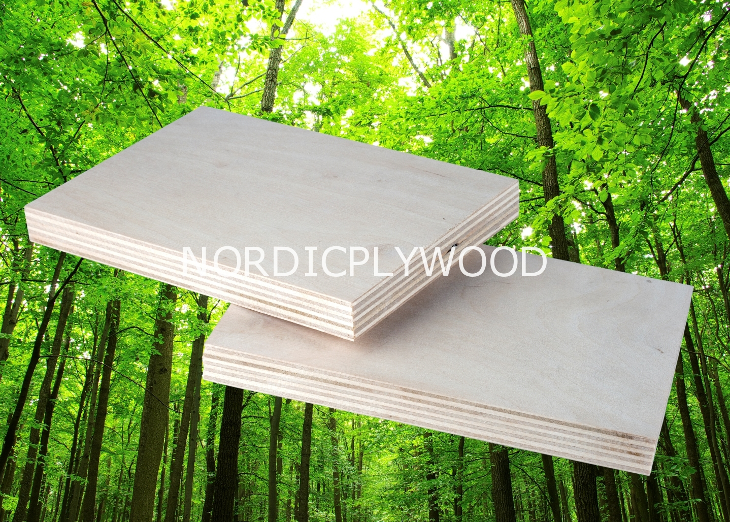 Cost of building a 8x6 shed base