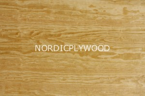 Conifer plywood